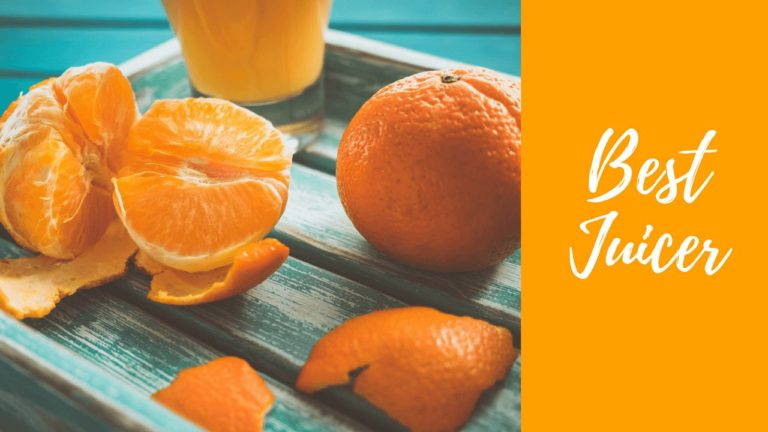 Top 10 Best juicer in India 2021 [Sept 2021]  – Reviews & Buyer's Guide